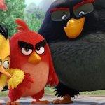 EXCL – Angry Birds, i pennuti della Rovio prendono vita in un backstage esclusivo dagli extra home video