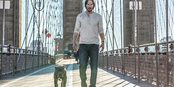 John Wick 2, una nuova clip col nuovo cane protagonista!