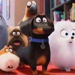 Pets – Vita da Animali da mercoledì 1 febbraio in home video, ecco tutti i dettagli