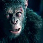The War – Il Pianeta delle Scimmie, la guerra ha inizio nel nuovo trailer!