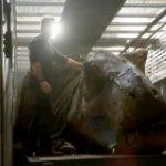 Jurassic World: Il Regno Distrutto, animatronic e scene spettacolari nel nuovo dietro le quinte