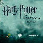 Harry Potter: la maratona estiva ad Arcadia Bellinzago ed Erbusco