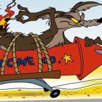 Coyote Vs. Acme: la Warner Bros. è al lavoro su un film su Wile E. Coyote