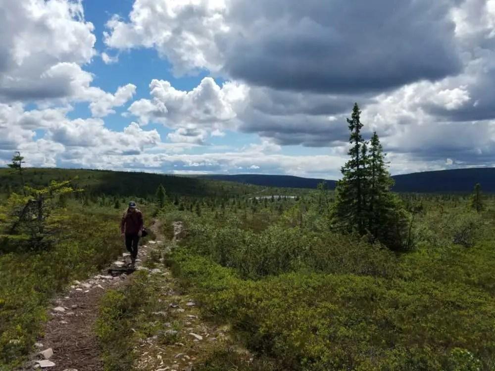 Wandern im Sälenfjäll in Schweden