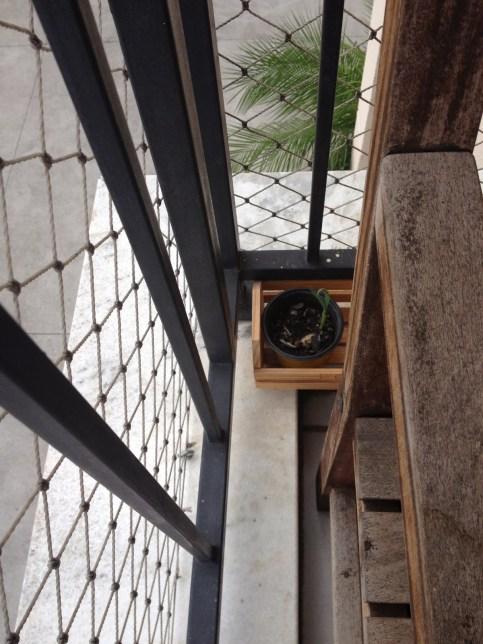 Num cantinho do chão, começamos nossa hortinha de temperos, por enquanto só a cebolinha está crescendo! Logo, logo temperos fresquinhos aqui em casa! Nhammm :)