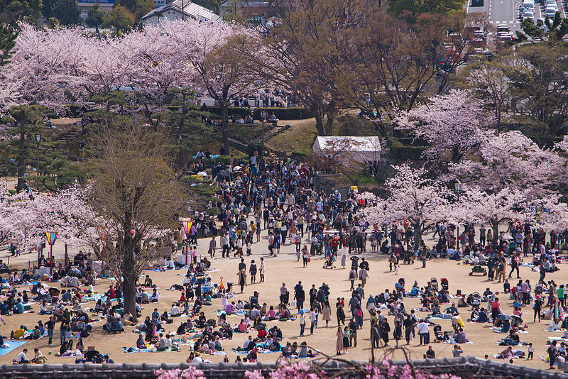 Cultura japonesa, senso coletivo