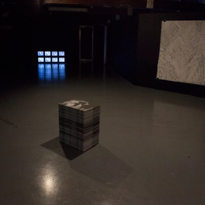 "Paradise Fallen installation view -stack of litho prints :the Subject of ""I"" collaboration with Danai Mupotsa, 2018  -video drawing, 8 Cathode Ray T.V's HDV transfer, 2018  - Shadow Palm, drawing, charcoal on fabriano 200gsm, 1,5 x 1,5m, 2018"