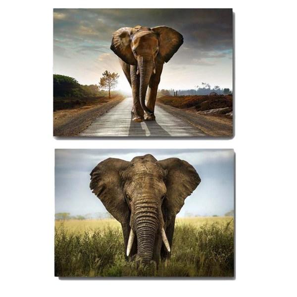 Canvas Tavla Afrikansk Elefant