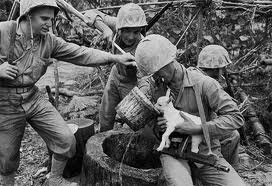 Troops Pause During Battle to Give a Baby Goat Water