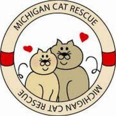 Michigan Cat Rescue Does So Much Good For My Fellow Felines