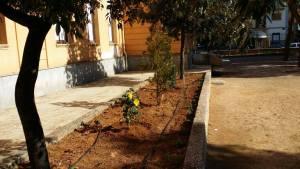 I Lions donano piante per il giardino della Scuola Cirrincione