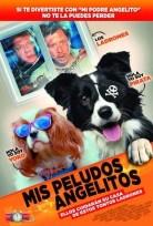 Evde Köpek Başına Filmi