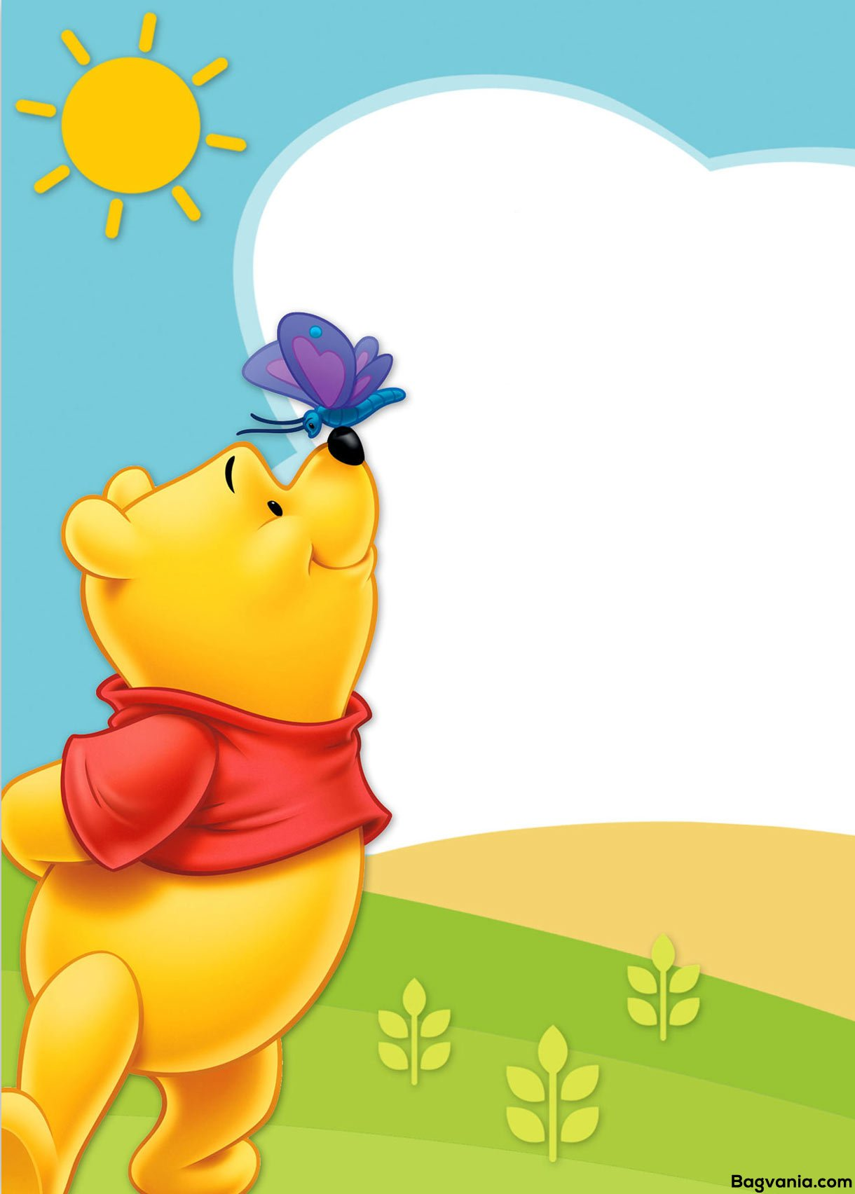 pooh birthday invitation wording