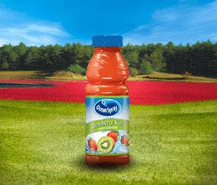 Strawberry Kiwi Juice Blend