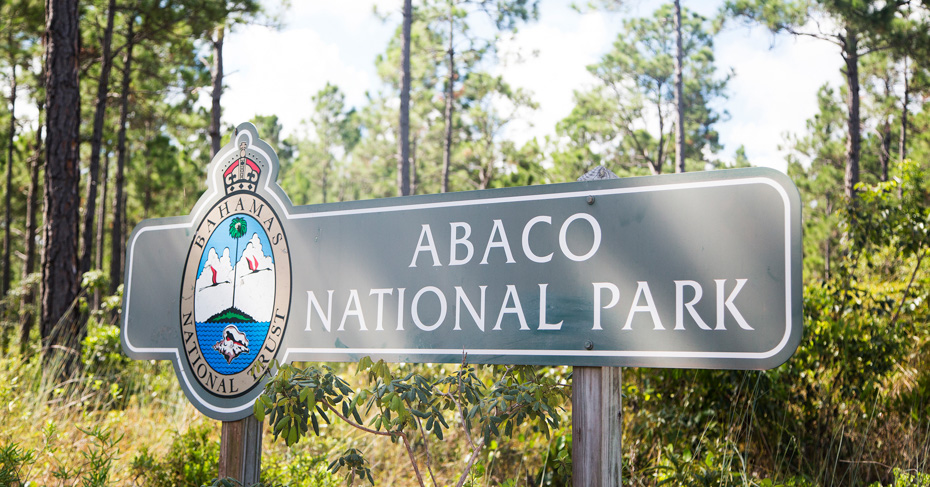 Abaco Bahamas National Park encompasses the south of Abaco Island. Visit Abaco Island by taking flight to bahamas with Bahamas Air Tours who fly from FLorida to Bahamas. Their tours include the bahamas pigs tour visiting the swimming pigs. Copyright Bahamas Ministry of Toursim