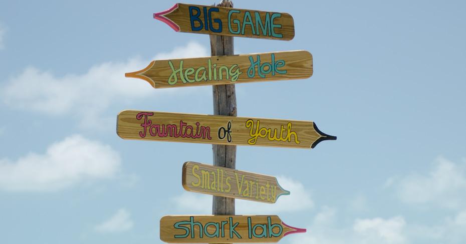 Bimini ferry, discover top things to do in Bimini. Flights to bimini on a bahamas charter flights with Bahamas Air Tours. Explore all the best Bimini beaches.