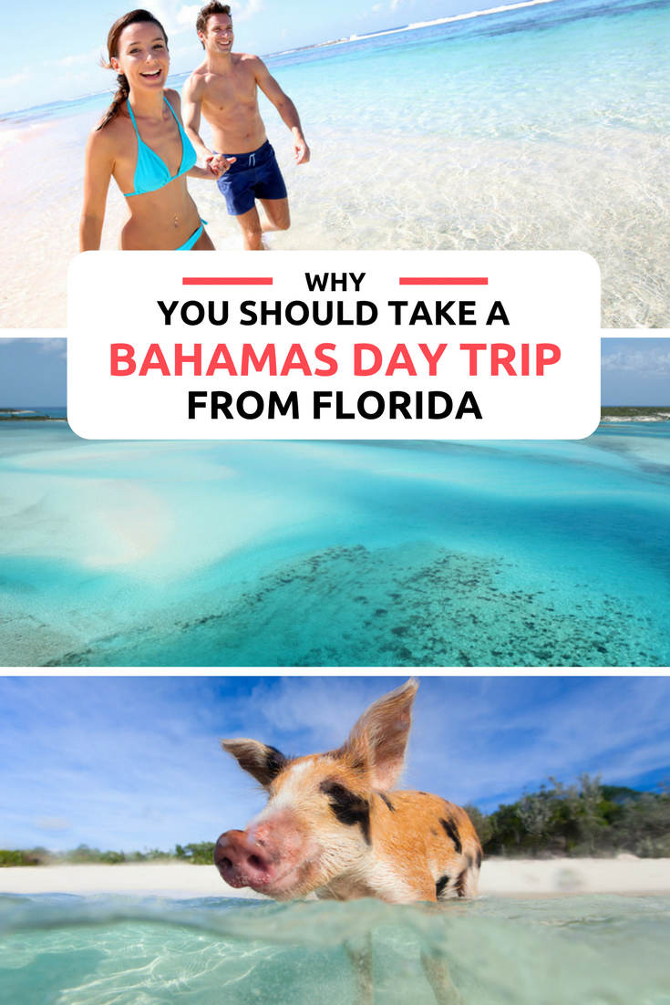 Day trips to Bahamas from Florida. For the best things to do in Bahamas take the ultimate Bahamas Vacation with a Bahamas Day Trip from Miami, Fort Lauderdale, Palm Beach or Orlando.  Bahamas Island Hopping tours make the best Bahamas Honeymoon with tours to the best Bahamas Beaches. From Nassau to the Out Islands, from Bahamas Pigs to Sharks and Flamingo.