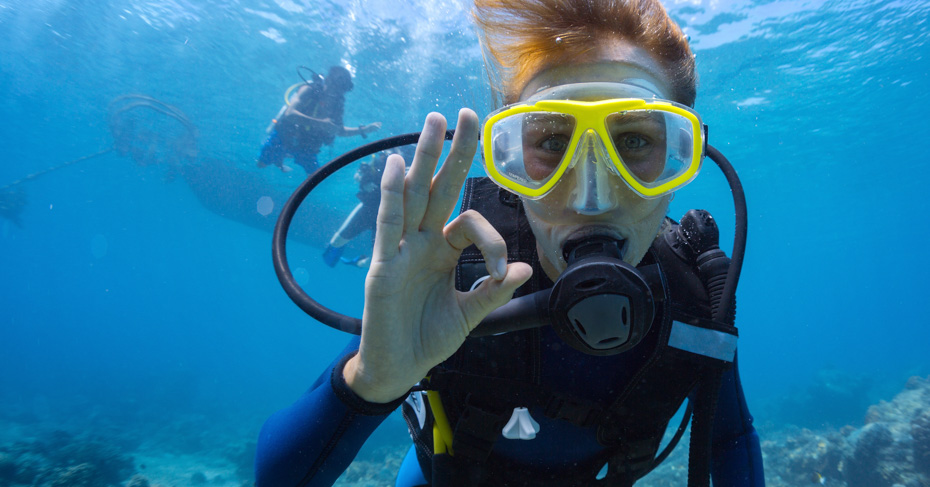 Bimini Bahamas Cruise Diving Discover the best bahamas scuba diving for the ultimate diving bahamas vacation. Fly from Florida to Bahamas with Bahamas Air Tours.
