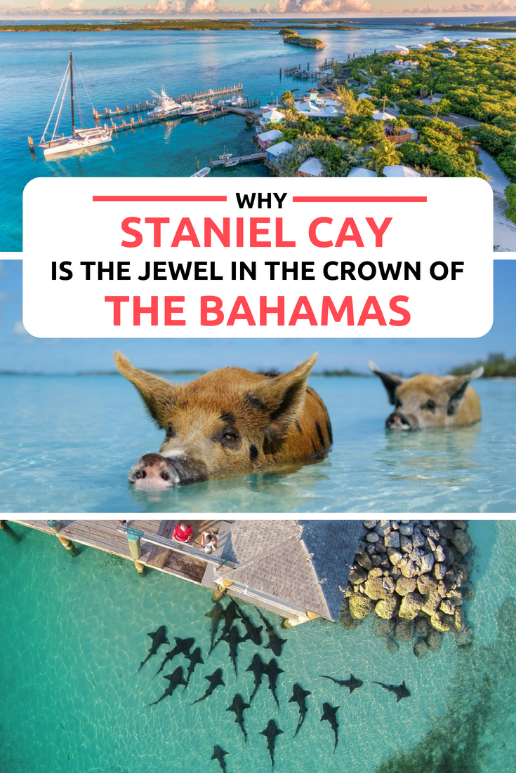 Staniel Cay: The top things to do in Bahamas! Perhaps the most beautiful place in the World, Staniel Cay is located in the Exuma Cays a short flight from Nassau or Bahamas Day Trip from Miami. Home to the famous Bahamas Pigs, Nurse Sharks, Iguanas, sunken plane wreck; Staniel Cay is a full day tour and the perfect Bahamas Vacation or Honeymoon destination. Relax at the Staniel Cay Yacht Club or visit one of the many Bahamas Beaches on Staniel Cay. #Bahamas