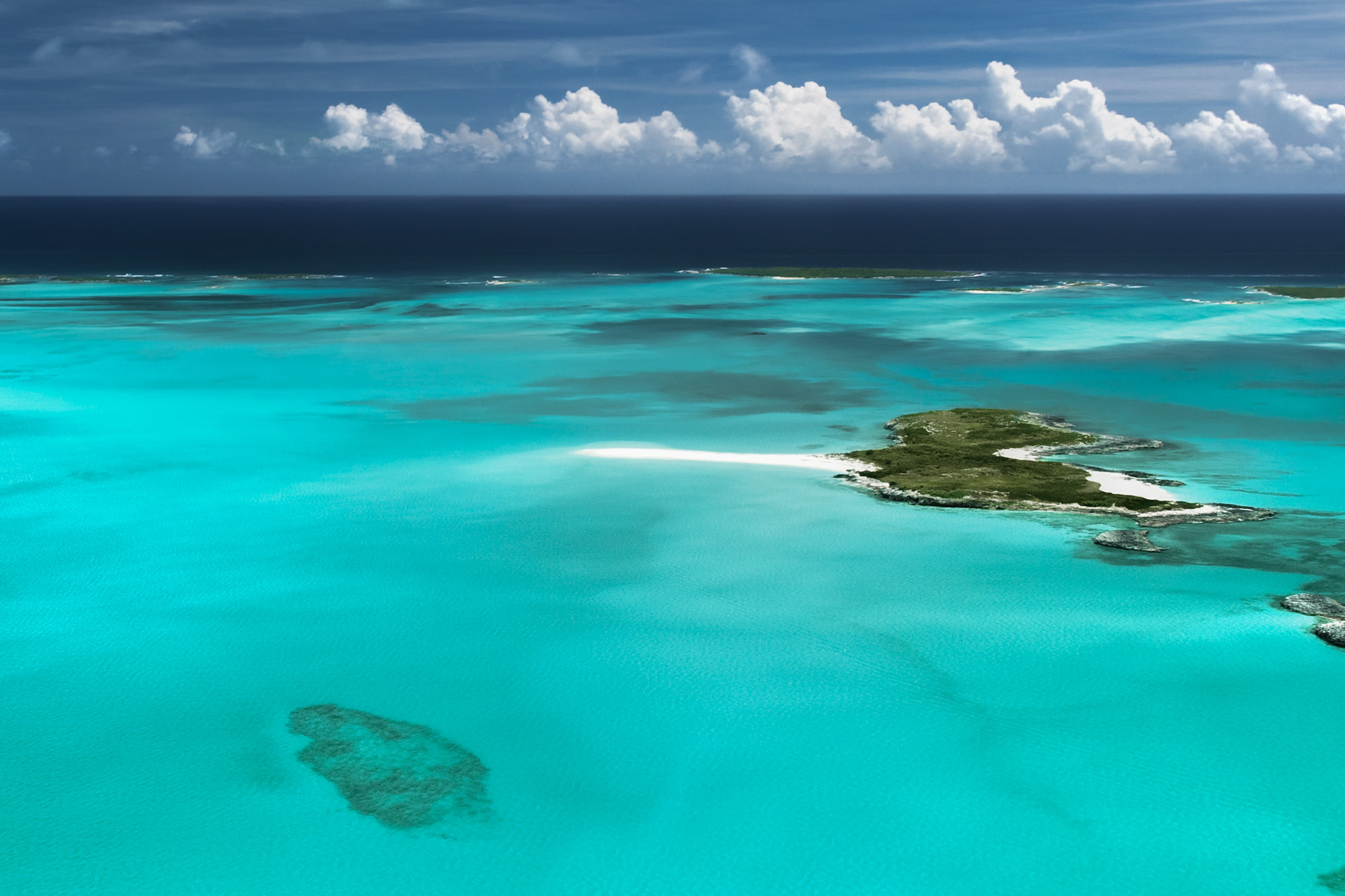 Bahamas Day Trips and Bahamas Tours from Florida. FLy to the swimming pigs at Staniel Cay in the Exumas