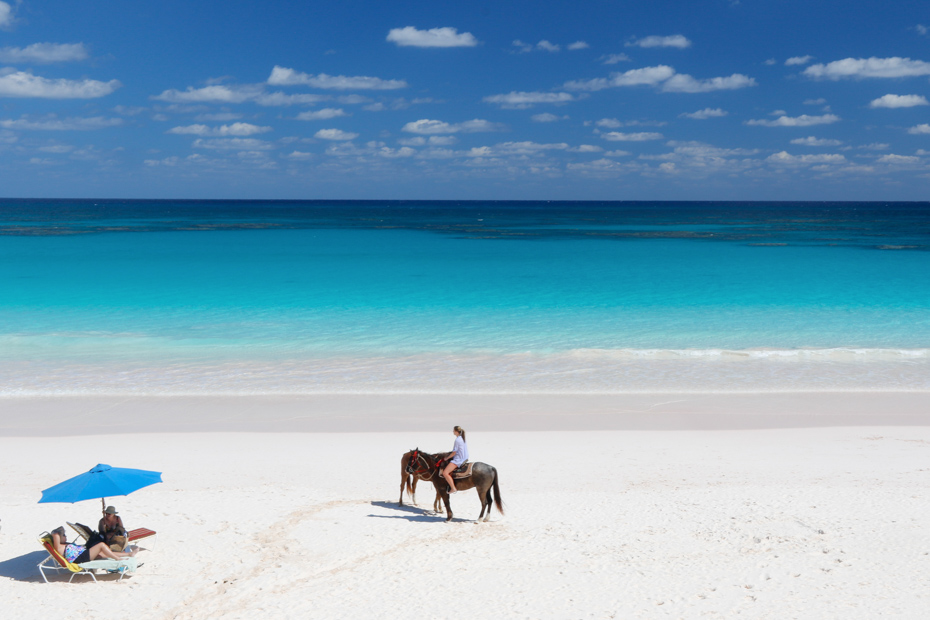 Pink Sands Beach Bahamas horseback riding on Harbour Island, Eleuthera. Take a day trip to Bahamas with Bahamas Air Tours today.