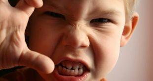 Çocuklarda Saldırganlık ve Öfke Kontrolü