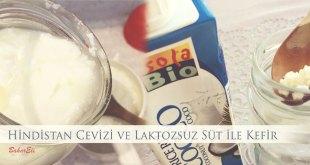 Hindistancevizi ve Laktozsuz Süt ile Kefir Yapımı