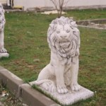 Aslan Maketi