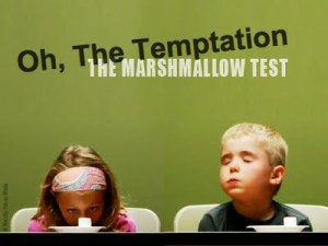 Book: 'The Marshmallow Test: Mastering Self-Control' by Walter Mischel