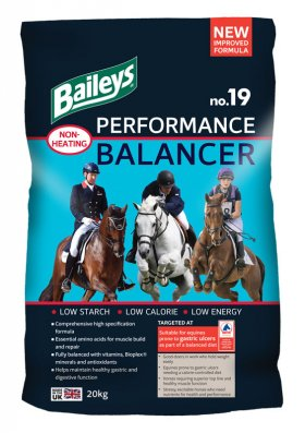 Image result for baileys performance balancer