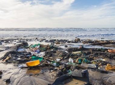 beach pollution rubbish marine environment