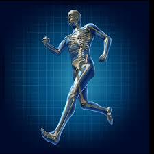 Tecnología de última generación permite la autorregeneración de nuestros huesos