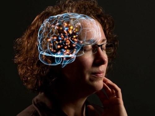 Avances neurocientíficos en la edición de la memoria