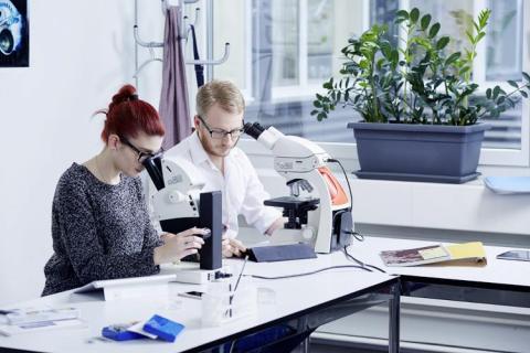Factores a tener en cuenta al seleccionar microscopios en el área de educación