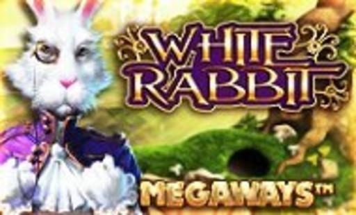第5位WhiteRabbitホワイトラビット