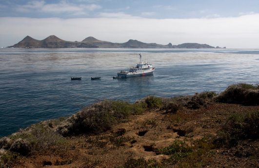 Searcher at Anchor - Isla San Benito, Mexico by Lee Morgan