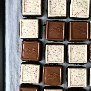 Peppermint Bark Shortbread Squares
