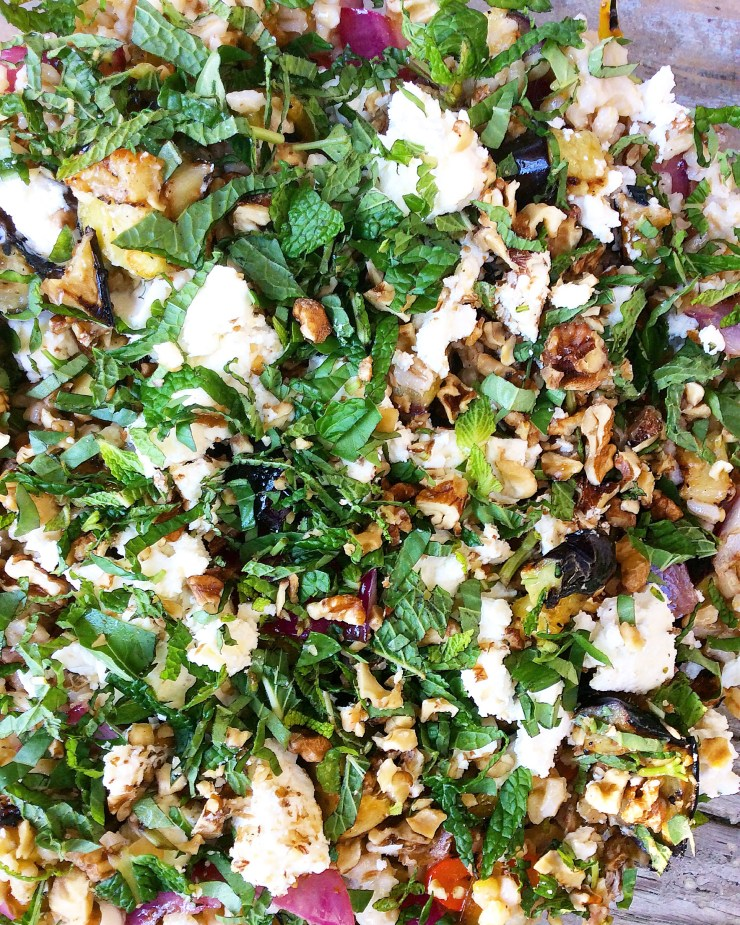 Barley Salad with Grilled Eggplant, Feta & Mint
