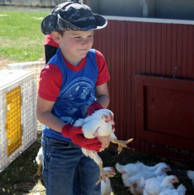 homestead wealth farm kids pastured poultry1-IMG_9785