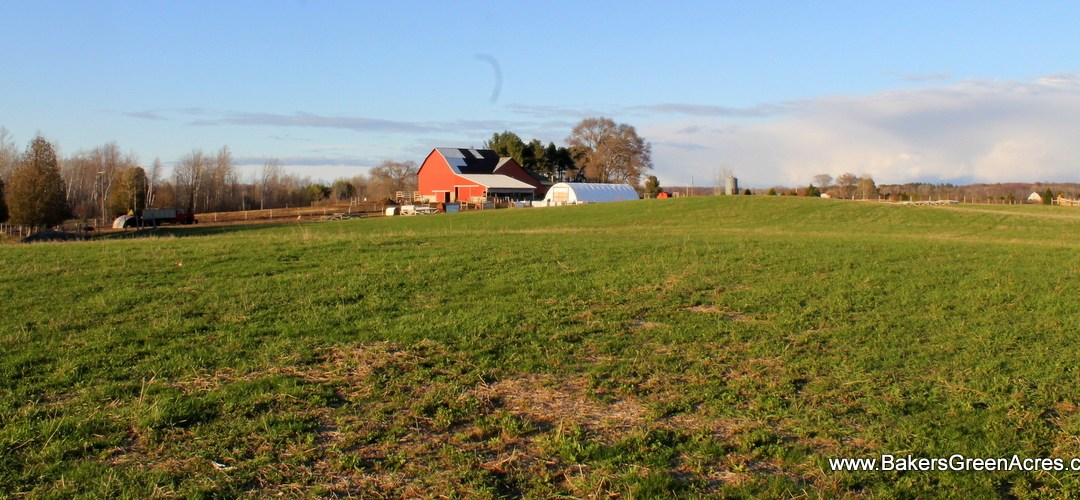 Farm Wealth Story: for farmers only
