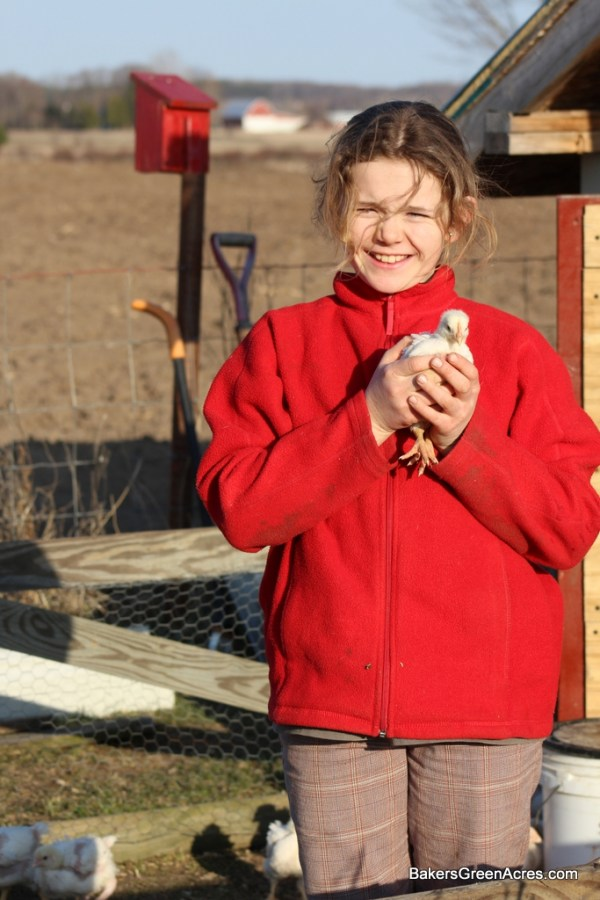 Children and chicks: anyone can farm