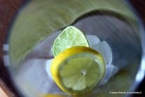 Ijsblokjes met citroen en limoen
