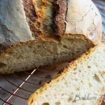 bierbrood structuur in snee brood