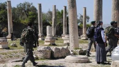 صورة مستوطنون يقتحمون الموقع الأثري في سبسطية  اقتحم عشرات المستوطنين،