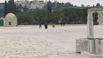 صورة الاحتلال يأخذ قياسات وينفذ أعمال مسح في المسجد الأقصى وقبة الصخرة