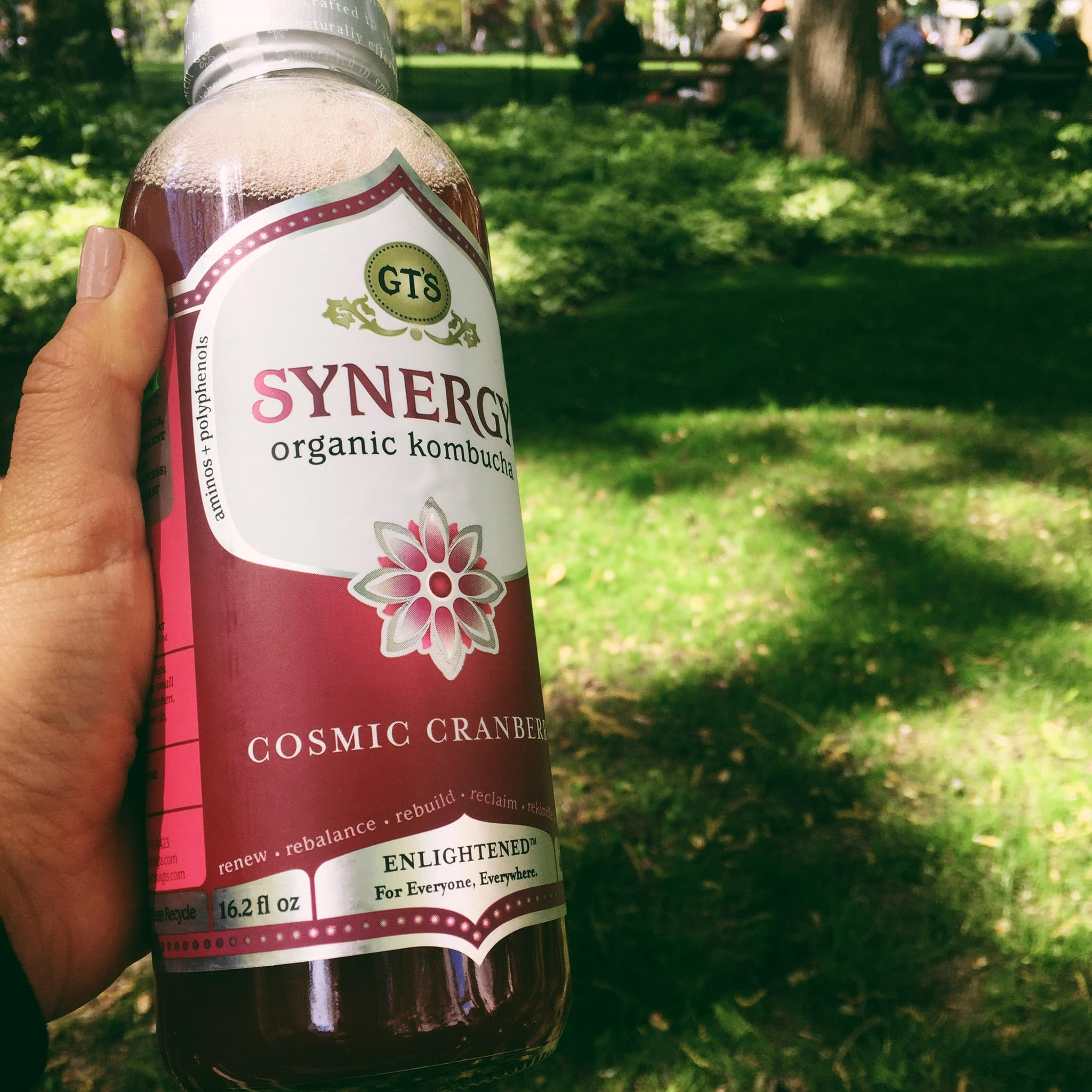 Kombucha Date: A Look Back at May 2017