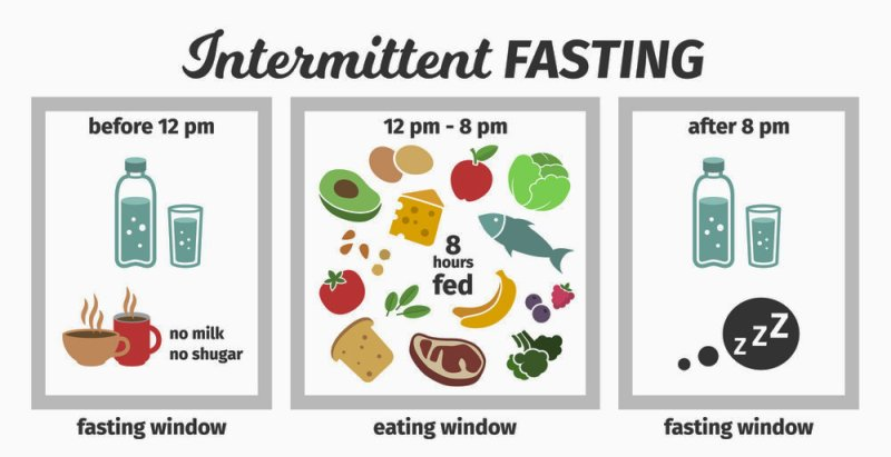 Intermittent Fasting: Why You Lose Weight