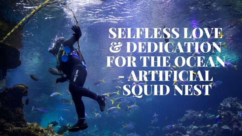 SELFLESS LOVE & DEDICATION FOR THE OCEAN - ARTIFICIAL SQUID NEST