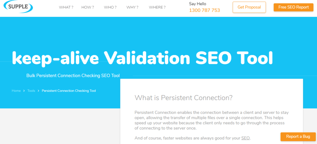 Keep‐alive Validation SEO Tool