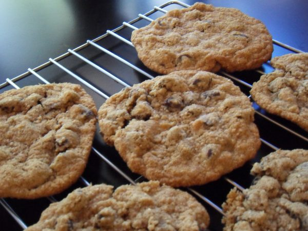 Flat and Chewy Honey Oatmeal Chocolate Chip Cookies